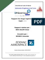 Rapport stage zodiac.docx