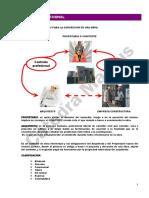 ER-15-Contrato-profesional.pdf