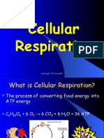 ADPATPandCellularRespiration.pptx
