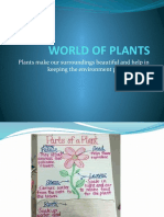 WORLD OF PLANTS(UROOJ).pptx