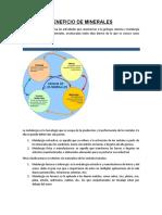 BENEFICIO DE MINERALES.docx
