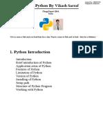 python .pdf