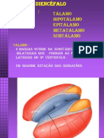 SNC  -  Interna.pdf