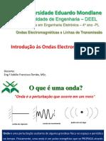 Aula 1- Introdução as OE.pdf