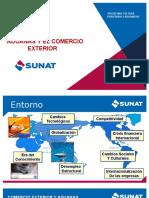 Exposicion Aduanas y El Comercio Exterior