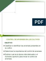 MANEJO DE ARVENSES