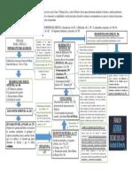 ESQUEMA DEBATE PROCESO PENAL.pdf