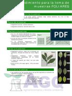 Procedimiento Recogida Foliar.pdf