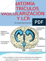 VENTRICULOS Y LCR # 2