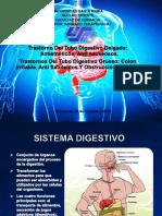 Trastorno Del Tubo Digestivo Delgado