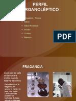 perfil-organoleptico -CLASE III