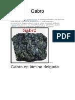 CARACTERISTICAS GENERALES DEL GABRO