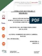 RSYM Inyeccion de polimeros.pdf