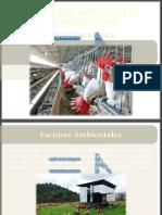 FACTORES AMBIENTALES y Alimentacion 11.pptx