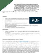 MATERIALES Y ENSAYOS TRABAJO.pdf