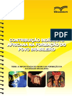 CONTRIBUIÇÃO INDÍGENA E AFRICANA NA FORMAÇÃO DO POVO BRASILEIRO