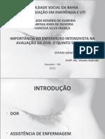 IMPORTÂNCIA DO ENFERMEIRO INTENSIVISTA NA AVALIAÇÃO DA DOR_O QUINTO SINAL VITAL ok 2