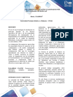 Anexo 2 - Documento.docx