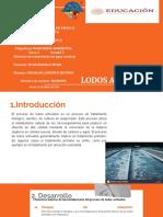 Sistemas de tratamiento de aguas residuales:Lodos Activados