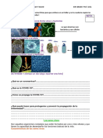 CTS PRIMERO.pdf