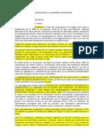 DEFINICIÓN DE LA CATEGORIA DE ESTUDIO