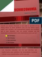 TAV elasticidad.pptx