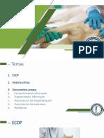 Documentos del ejercicio profesional .pdf