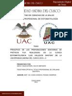 Celes_Tesis_bachiller_2019.pdf