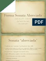 Forma sonata abreviada (Salles 2017).pdf