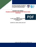 DISEÑO EXPERIMENTAL NO.5 - PRUEBAS DE IDENTIFICACIÓN DE GRAM POSITIVOS.docx