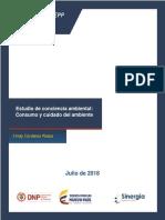 Evaluacion_Conciencia_ambiental_Documento_vf