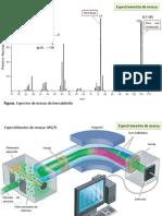 Espectrometria De Massas - Teoria E Instrumentação.pptx