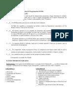 Pauta_Prueba1