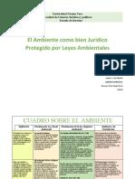 Cuadro sobre el ambiente como bien juridico protegido