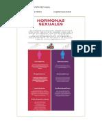 hormonas sexuales.pdf