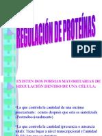 REGULACION DE PROTEINAS.ppt