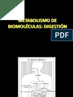 Tema 13. DIGESTIÓN DE BIOMOLECULAS