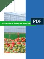 PrevencionRiesgosInvernaderos.pdf