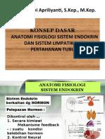 Anfis Endokrin