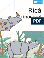 Rică Rinocerul