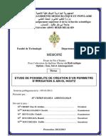 Ms.Hyd.CHIKH (1).pdf