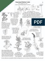 1189_usa_dunesland_habitat_guide_0.pdf