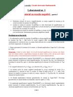 LABORATOARE 1 si 2 - Circuite fundamentale