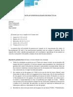 Ejemplo PIP.pdf