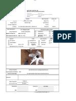 MPI Report 011 3 and a half DP Elevator B109-3