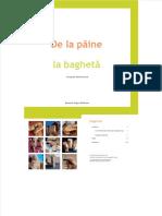 pdfslide.net_carte-retete-masina-de-facut-paine-moulinex.pdf