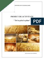 """Proiect de activitate """"De la grâu la pâine"""""""