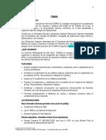 INFORMACION DEL PIR, CMAN Y OTROS.docx