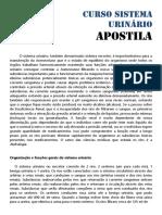 Apostila-Urinário.pdf