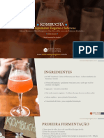 406066929-Guia-Kombucha.pdf